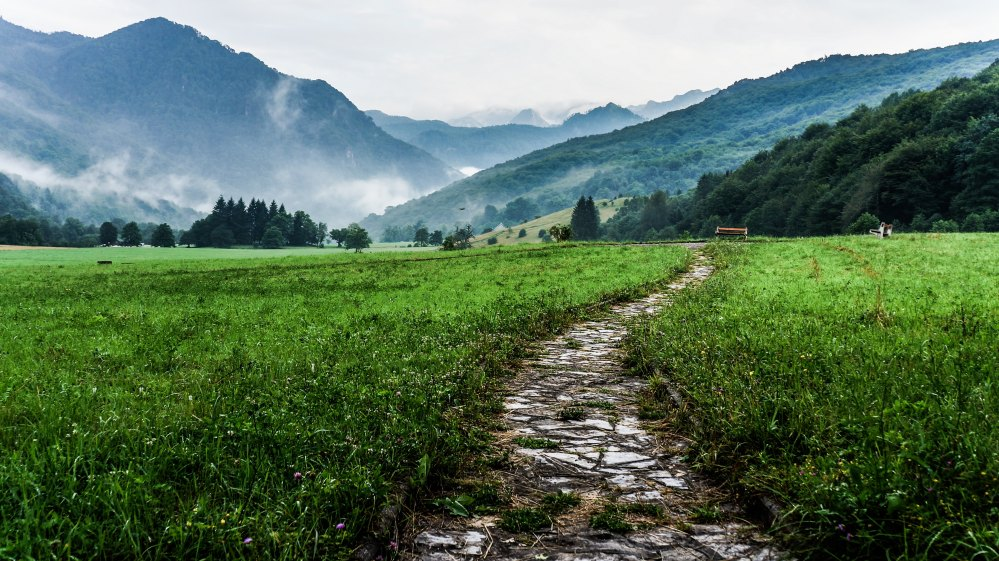 A winding path between green grass that leads into the mountains