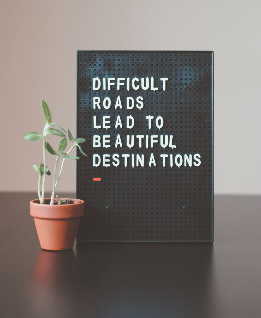 "a succulent next to a sign that reads ""difficult roads lead to beautiful destinations"""